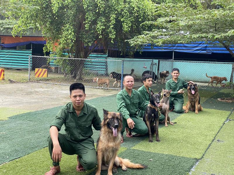 Trường huấn luyện chó tốt nhất tại Tphcm